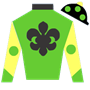 tswheel Silks