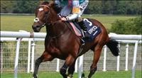 Frankel_Sussex
