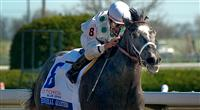 General Quarters Begins Stud Career in Ocala