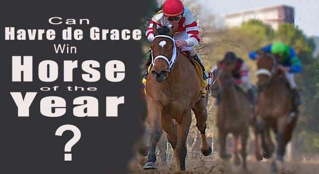 Does Havre de Grace have what it takes for score Horse of the Year?