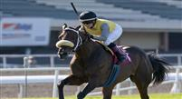July 17, 2011: Imponente Purse and Chantal Sutherland win the Sunset Handicap(GIII) for trainer A.C. Avila at Hollywood Park, Inglewood, CA .