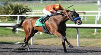 July 16, 2011.Irish Gypsy ridden by Martin Garcia, winning the A Gleam Handicap at Hollywood Park, Inglewood, CA