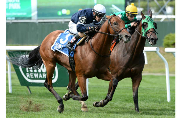Preakness: Always Dreaming, Classic Empire could face off ...