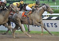 Macho Again captures the 2008 Jim Dandy