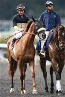Magical Fantasy and Alex Solis before the Gamely win