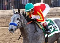 Midnight Lucky wins the 2013 Sunland Park Oaks with Rafael Bejarano.