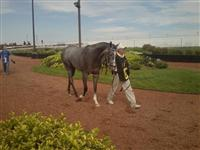 Mini Mine Mo at Hoosier Park (9.15.12)