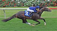 July 20, 2011.Mr. Commons ridden by Mike Smith in the stretch before winning the Oceanside Stakes on opening day, Del Mar thoroughbred Club, Del Mar California