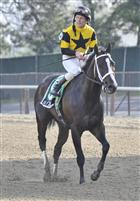 Mr. Fantasy captures the Withers for West Point