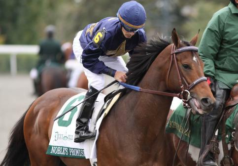 Noble's Promise with Willie Martinez up prior to winning The Breeder's Cup Futurity (gr.I) at Keeneland. 10.10.2009