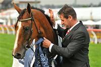 /horse/Pinker Pinker