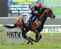 Point of Entry wins 2012 Man o' War