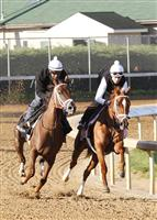 Princess Of Sylmar works in company with Fusaichiswonderful at Churchill Downs in preparation for the 2013 Kentucky Oaks.