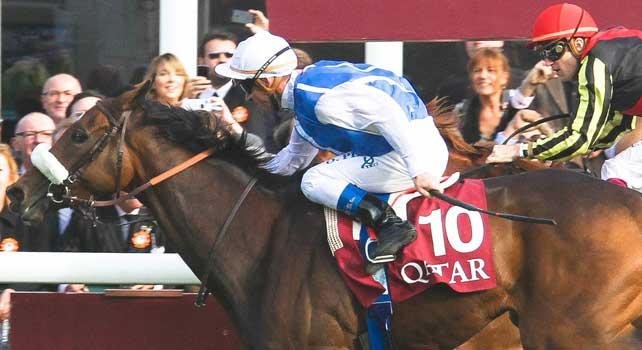 Qatar Prix de l'Arc de Triomphe 2012