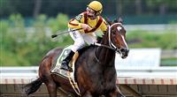 /horse/Rachel Alexandra