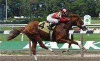 /horse/Reverberate
