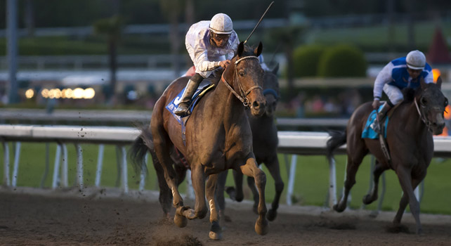 Ron The Greek wins the Santa Anita Handicap.