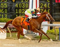 Samstown stakes at Delta Downs 2013