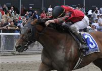 Seattle Smooth captures the 2009 Ogden Phipps