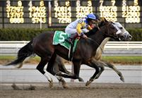 Tale of Ekati gets nosed out by Harlem Rocker in the Cigar Mile, but gets put up by DQ