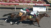 October30, 2010.Ultra Blend riden by Joel Rosario wins TheTOC/CTT California Cup Matron at Hollywood Park, Inglewood, CA._Cynthia Lum/Eclipse Sportswire.com