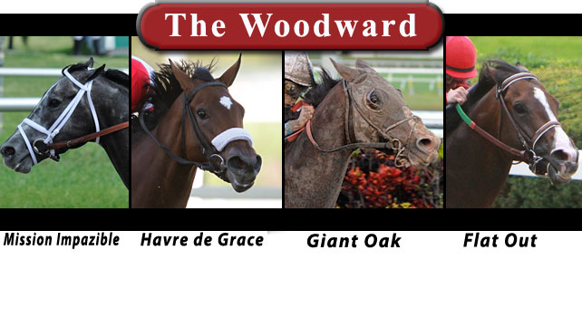 2011 Woodward contenders include Mission Impazible, Havre de Grace, Flat Out and Giant Oak