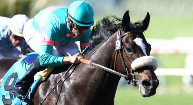 Zenyatta captures the 2009 Milady