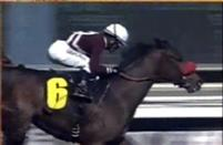 Tiz Flirtatious wins an Allowance race on October 29 at Santa Anita Park